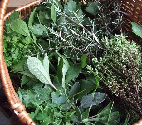 herbs in basket picture